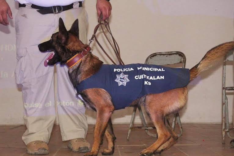 Gerson Calixto pone en marcha unidad canina K9 en Cuetzalan