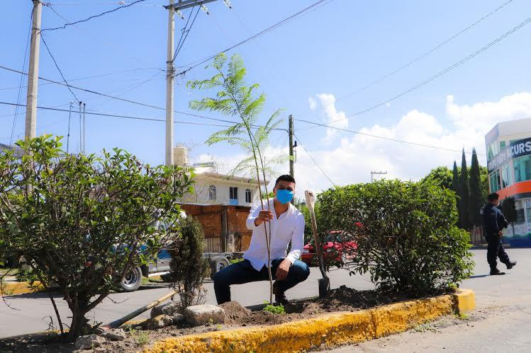 Alejandro Martínez inicia Jornada de Reforestación