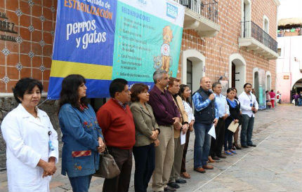 Galeazzi Berra inicia campaña de macroesterilización de mascotas