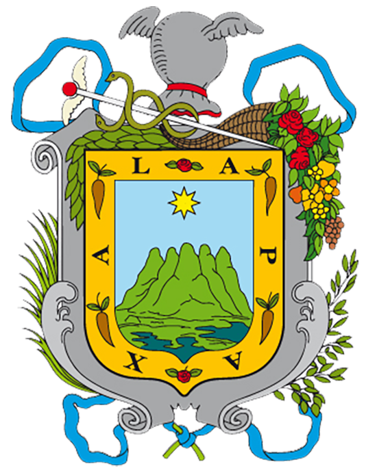 Presidente Municipal de Xalapa, VER