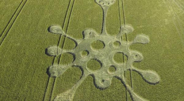 Aparece imagen de coronavirus en campos de cultivo de Inglaterra