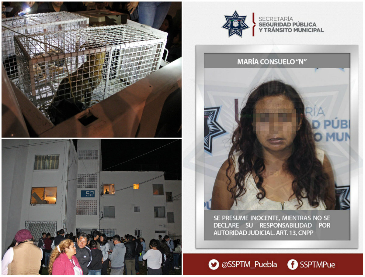 Foto: Agencia Enfoque / @SSPTM_Puebla