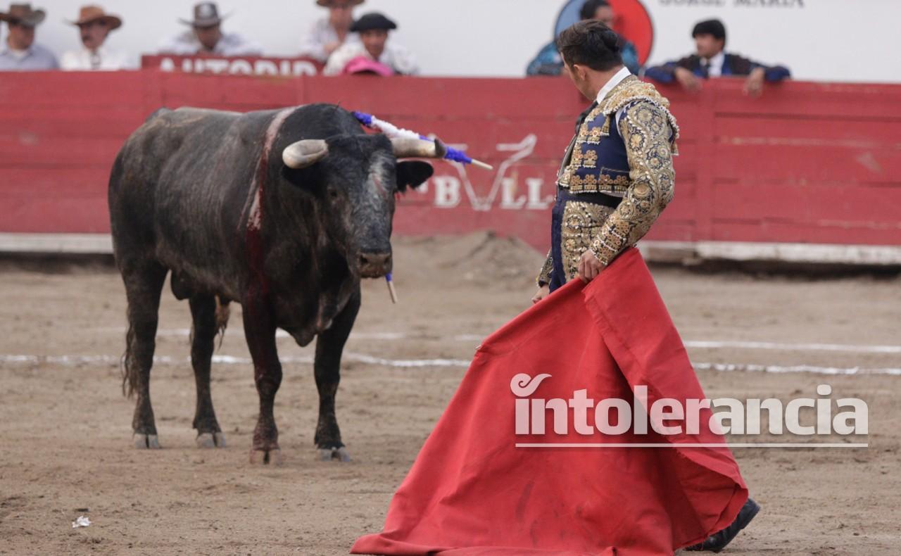 Propone AMLO hacer consulta ciudadana para prohibir corridas de toros