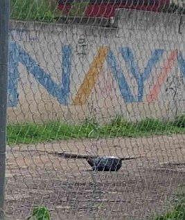 Hallan restos humanos en contenedor de basura en colonia Universidades